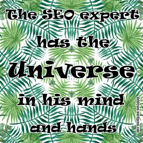 we are seo experts