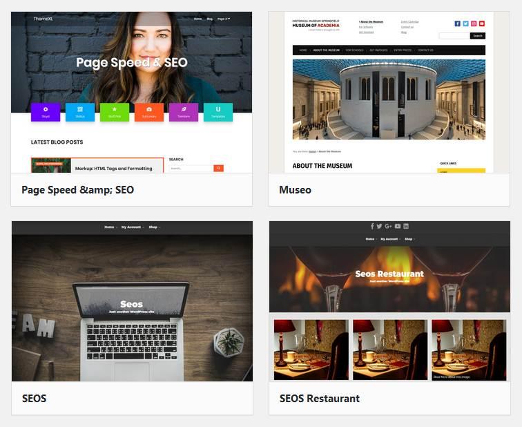 WordPress SEO theme change